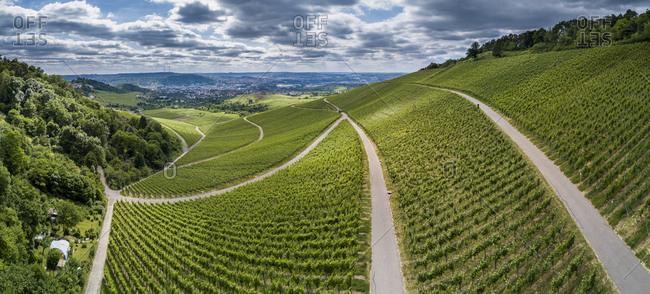 Germany- Stuttgart- aerial view of vineyards at Kappelberg