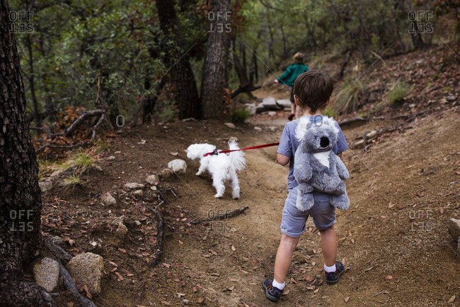 Children hiking on trail with dog