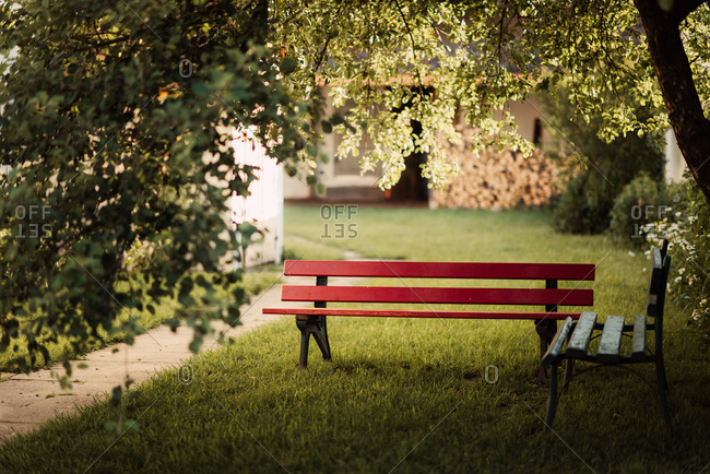 Red bench under a tree