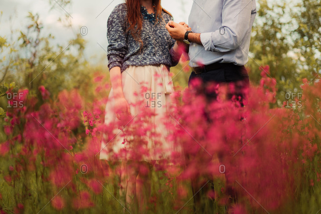 Couple holding hands in field with pink flowers