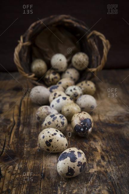 Quail eggs on dark wood