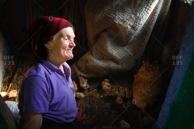 Vadeni, Moldova - July 24, 2017: Woman inside a chicken coop