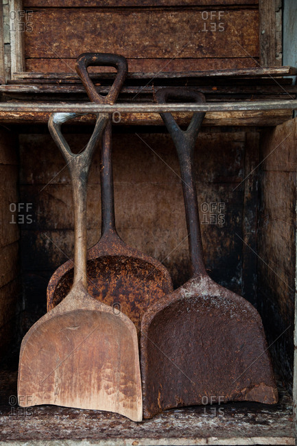 Shovels at cocoa bean farm