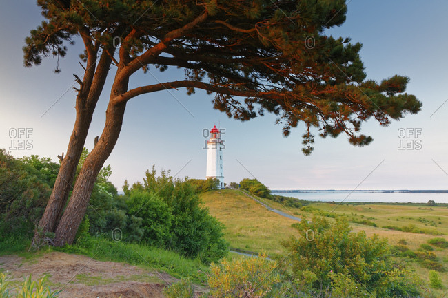 Germany- Mecklenburg-Western Pomerania- Hiddensee- Dornbusch lighthouse on the Schluckswiek