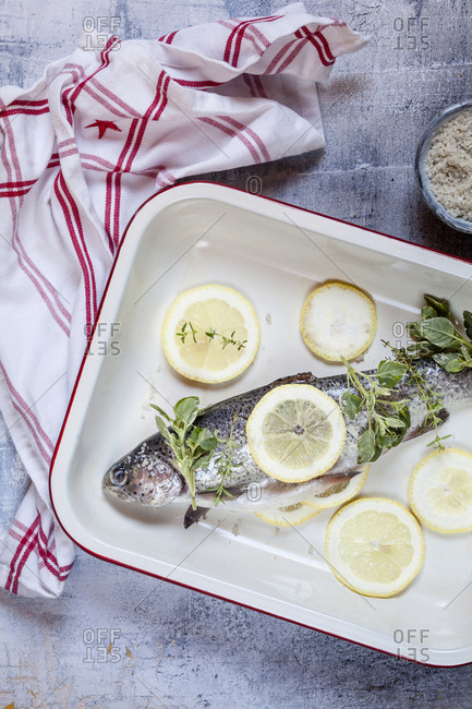 Roasting dish of fresh salmon trout with lemon slices