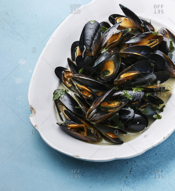 Mussels on white plate on blue background close-up