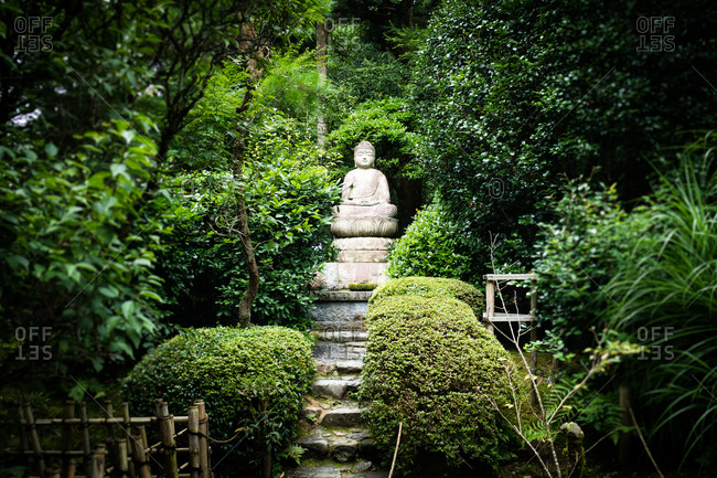 Ancient statue of buddha in a forest