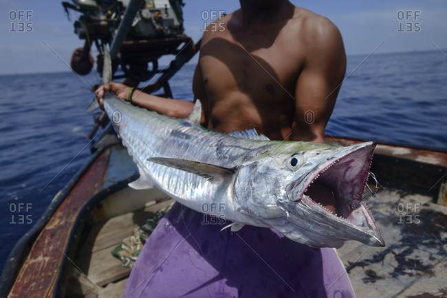 Person holding up a big game fish caught in the ocean