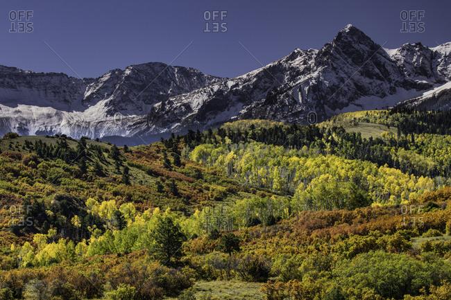 Autumn, aspen trees and Sneffels Range, Mount Sneffels Wilderness, Uncompahgre National Forest, Colorado