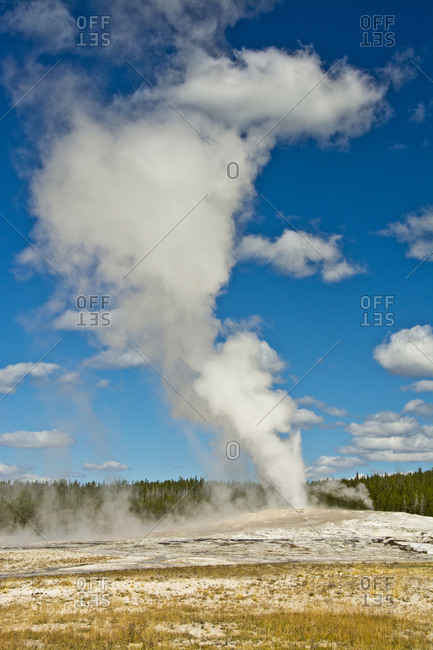 Old Faithful, erupting, Yellowstone National Park, Wyoming, USA