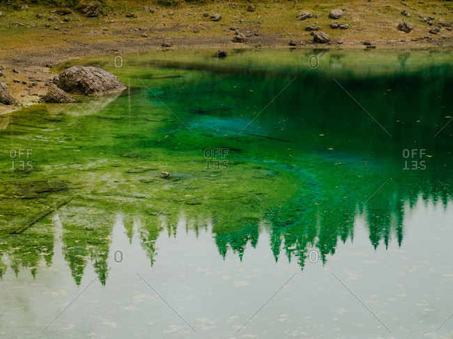 Reflection of trees in water in Dolomites, Italy