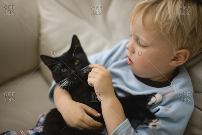 A young boy holding a kitten