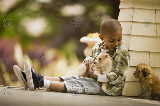 A young boy sitting on a veranda with two puppies