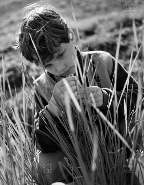 A young boy amongst tall grass