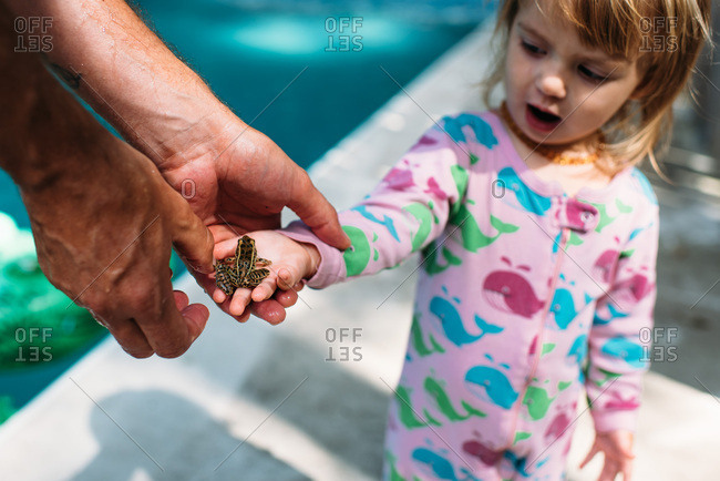 Toddler girl wearing pajamas holds a small frog