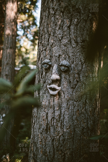 Tree trunk with a face on it