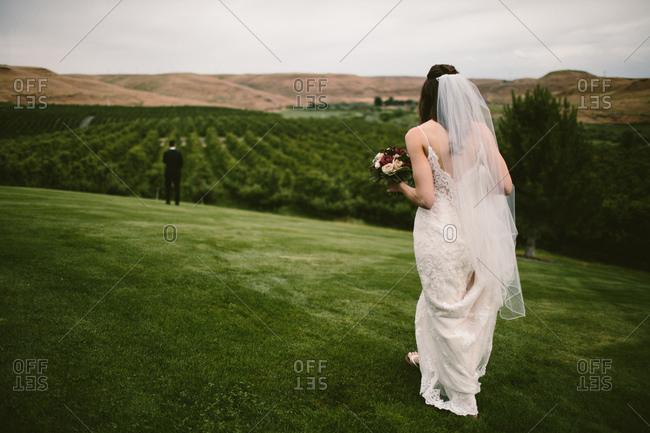 Bride walking towards groom in field by apple orchard
