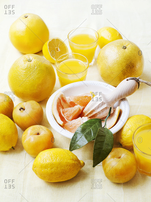 Still life of fresh grapefruits with lemons and juicer