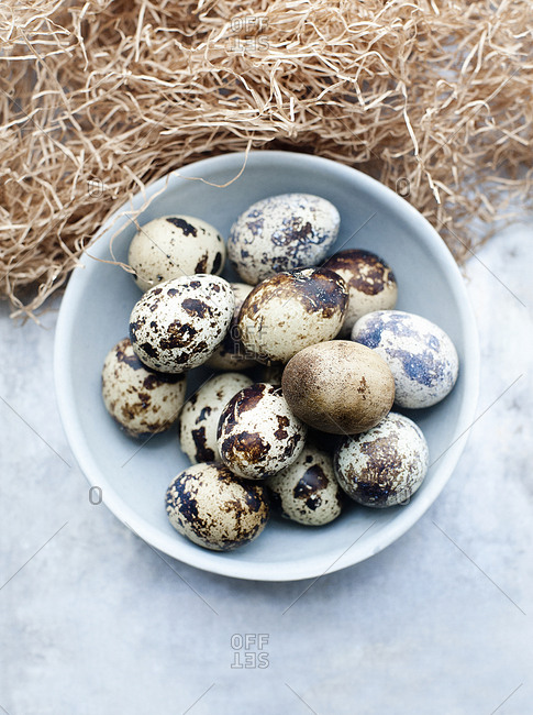 Still life of fresh quails eggs in bowl
