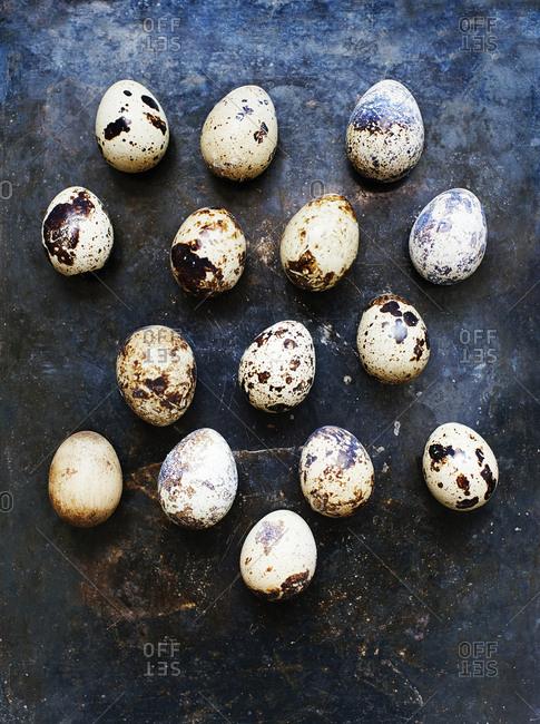 Still life arrangement of fresh quails eggs