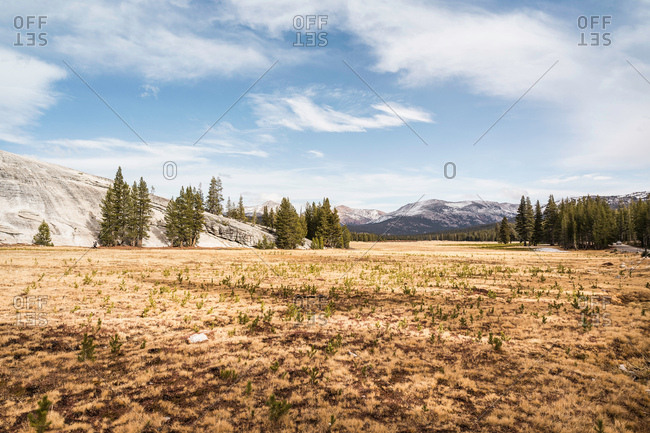 Landscape with distant mountains, Yosemite National Park, California, USA