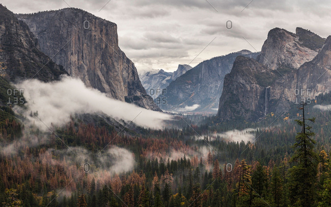 Elevated view of valley forest mist, Yosemite National Park, California, USA