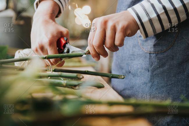 Florist in flower shop, cutting stem of flower, mid section, close-up