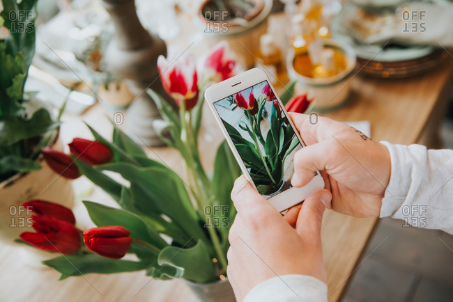 Florist in flower shop, photographing flowers in shop, using smartphone, close-up