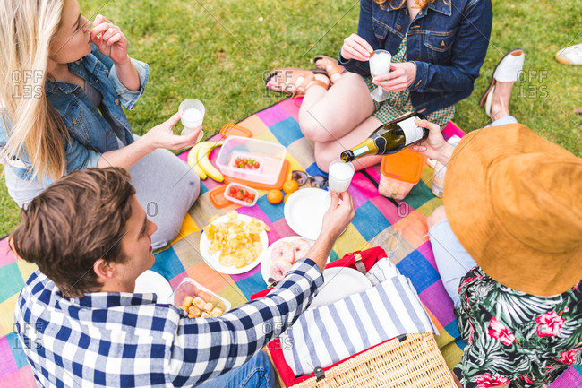 Group of friends enjoying picnic in park, pouring champagne