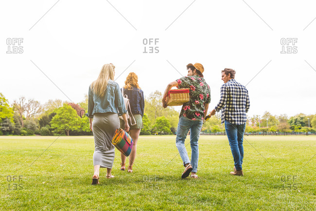 Group of friends walking across field, carrying picnic basket, blanket and bottle of champagne, rear view
