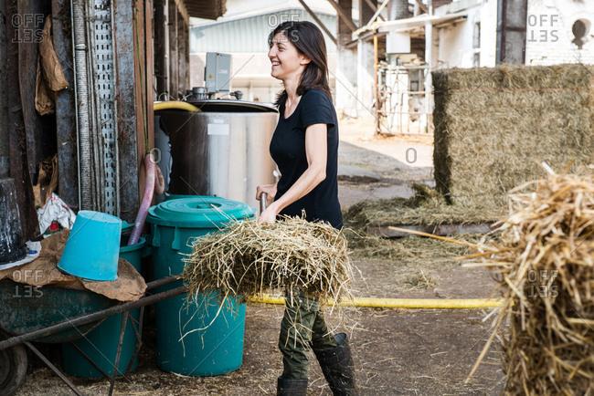 Female organic farmer with pitch fork of hay on dairy farm