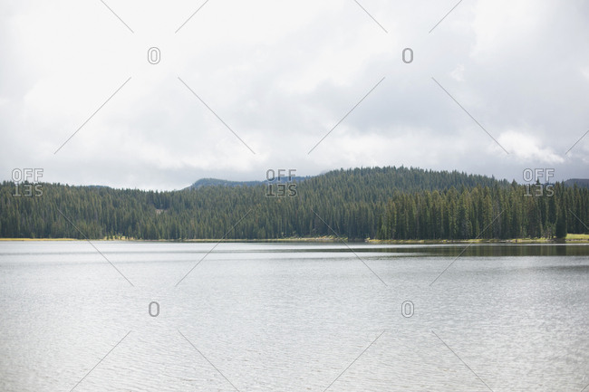 A lake near pine forested hills