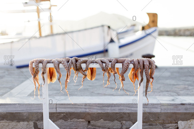 Octopus hanging to dry on Greek Island