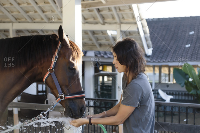 Side view of woman feeding water to horse using garden hose