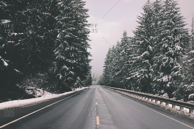 Empty highway between snow-covered trees in a forest