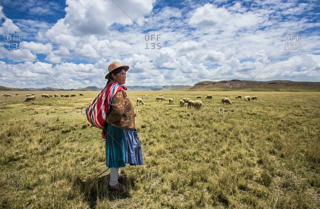 BOLIVIA - December 20, 2013: Side view of indigenous woman in traditional clothing looking pensively away while pasturing cattle