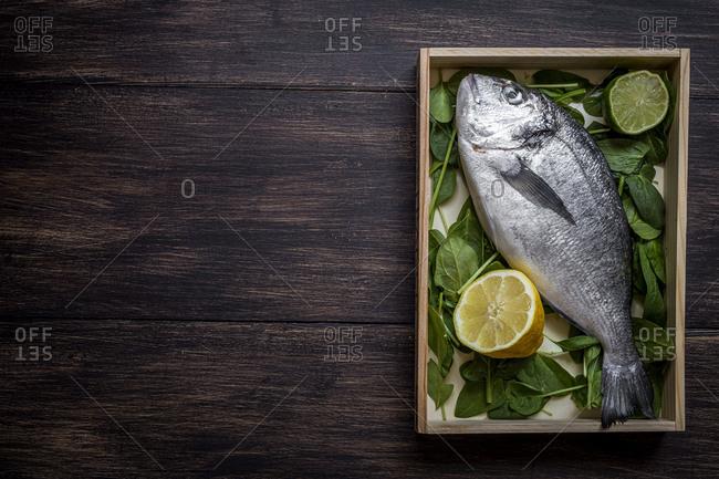Fresh raw fish on wooden board