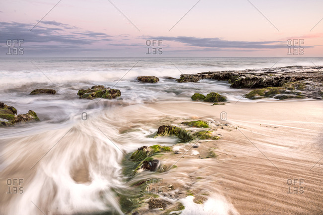 Seascape with seaweed covered rocks