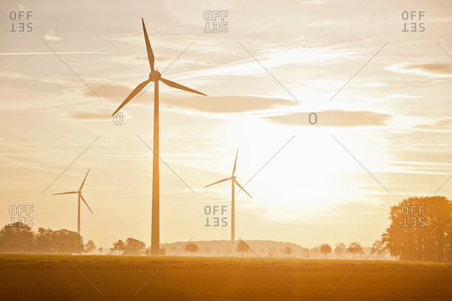 Wind turbines in rural landscape