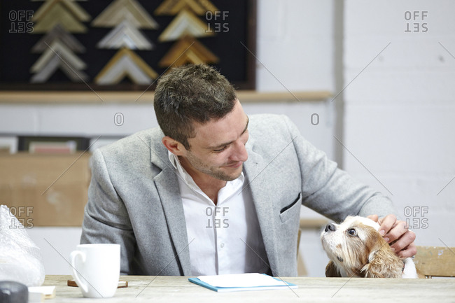 Mid adult man petting dog at desk in picture framers workshop