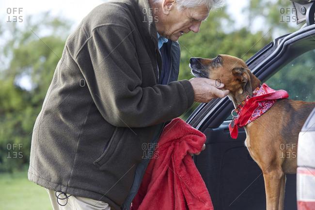 Man stroking dog