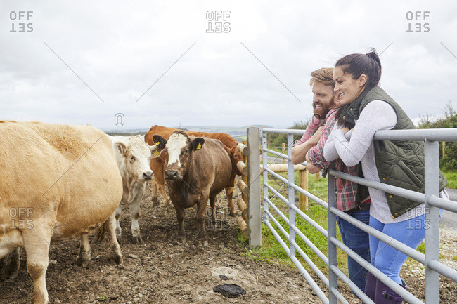 Couple leaning against gate on cow farm looking away