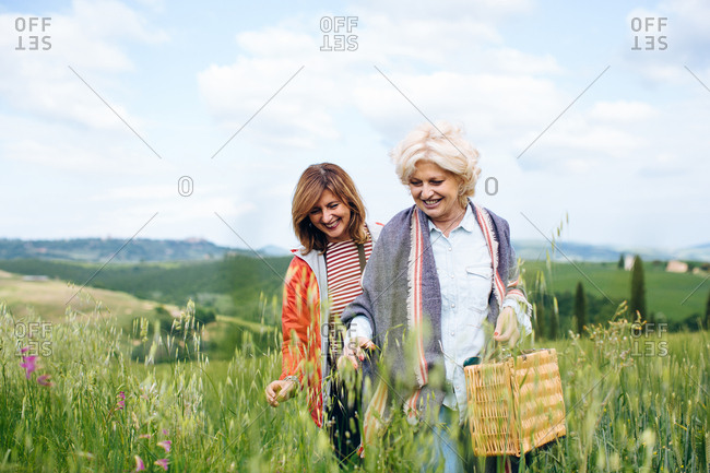 Two mature women carrying picnic basket in wheatfield, Tuscany, Italy