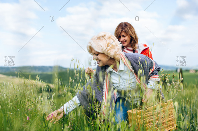 Two mature women looking at long grasses in wheatfield, Tuscany, Italy