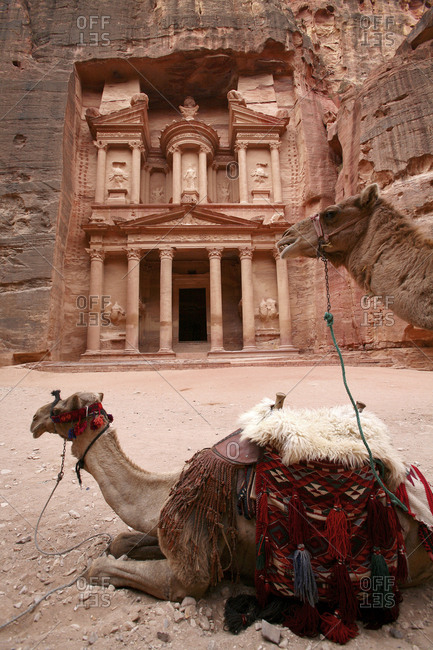 Jordan- Petra- view to Al Khazneh with camel lying in the foreground