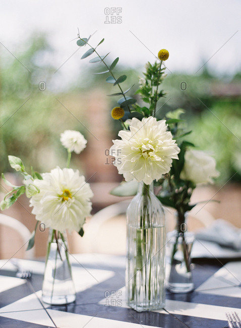 Single stem flowers in vases