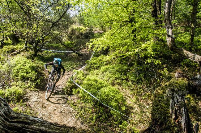 Wicklow, Wicklow, Ireland - May 12, 2016: A Mountain Biker Riding On Pristine Trails In Wicklow, Ireland