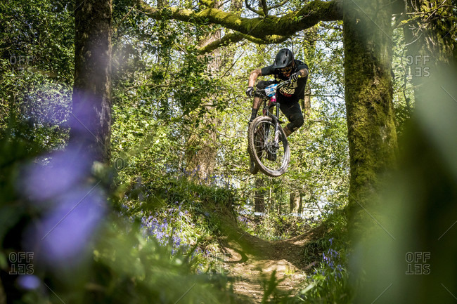 Wicklow, Wicklow, Ireland - May 13, 2016: Mountain Biker Jumping In Mid-air On Dirt Track In Forest