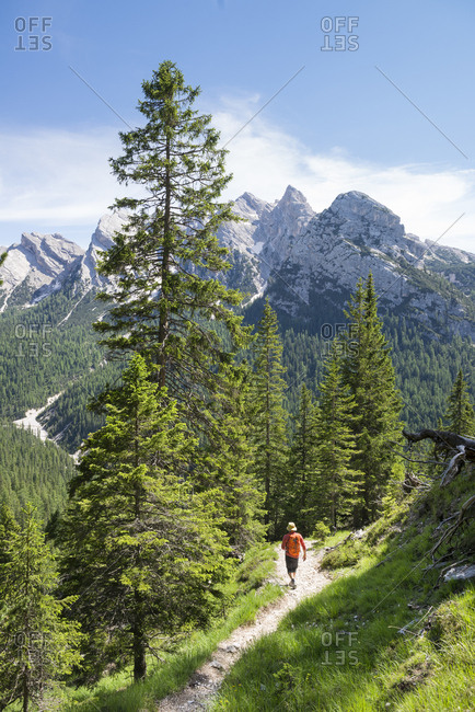 Belluno, Italy - July 3, 2014: One person hikes on a trail at the Dolomites, Italy.