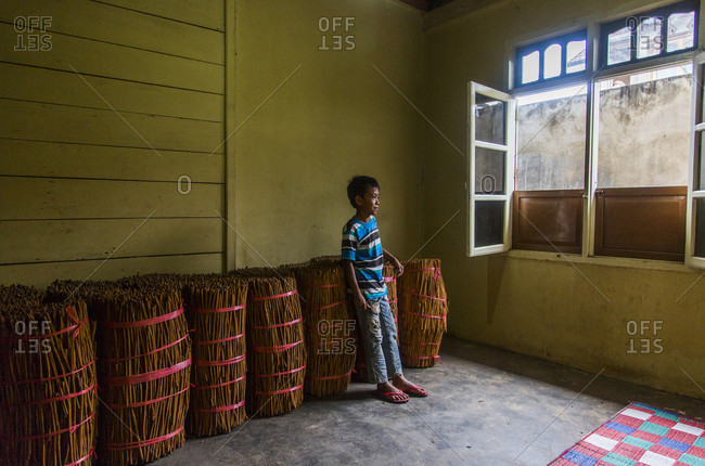 Kerinci Valley, Sumatra, Indonesia - February 25, 2015: A young boy stands against large bundles of Cassia cinnamon bark in a small house in Kerinci Valley, Sumatra, Indonesia.